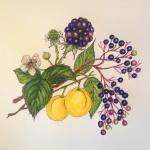 Fruchtaufstrich Wildfrüchte Mix